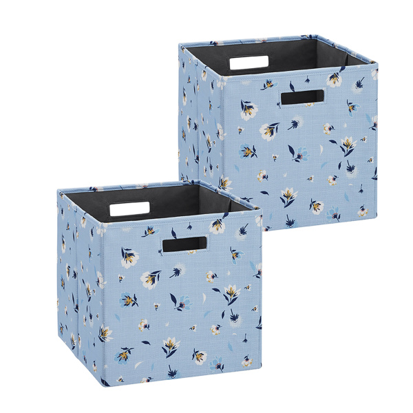 BN100BDAISY02AS Galli BIN DAISY 2 PACK