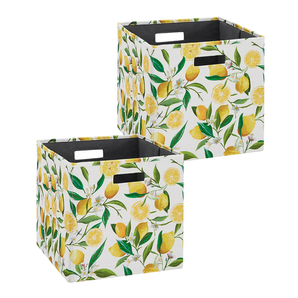 BN100LEMON02AS Galli BIN LEMON 2 PACK